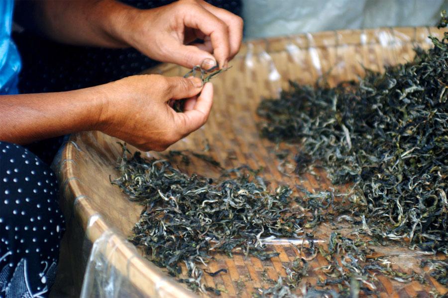 Иван-чай как сделать зеленый чай 315