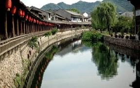 Превью записи «Древо бессмертия из Цзянсу»