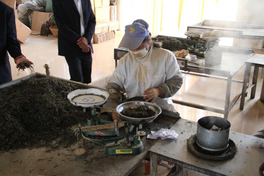Контроль качества красного чая
