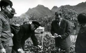 Превью записи «Развитие чайной школы в Китае набирает оборот»
