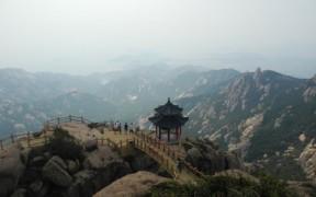 Превью записи «В чайном семействе Лао Шань прибавление»
